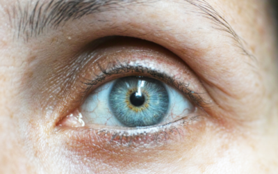Healthy Vision & the Aging Eye